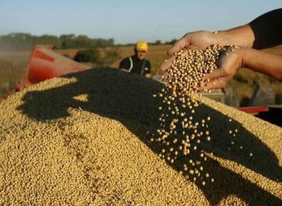 Buen clima y suba de precios de commodities dan plus a economía