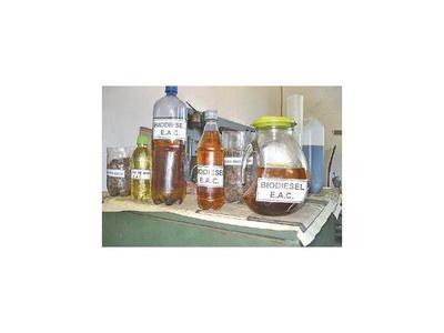 Sigue en evaluación aumento al 3% de mezcla de biodiésel con gasoil común