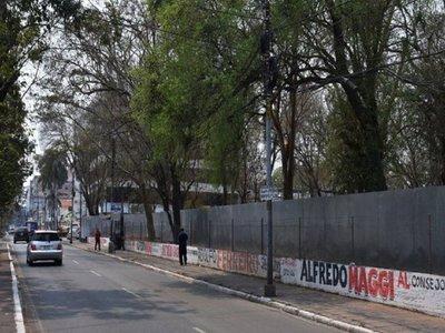 Piden reconsiderar obras en predio de IPS por tala de árboles