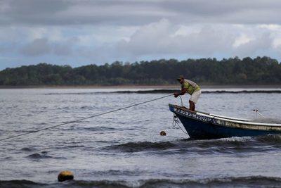 La pesca de Perú creció 2,08 %, pero la minería cayó 13 % en 2020