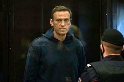 """Navalni pide a sus seguidores que liberen a Rusia """"de los ladrones en el poder"""