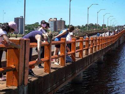 MOPC impide que voluntarios pinten el puente Mbói Ka'ê de Encarnación