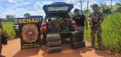 Senad incauta 374 kilos de marihuana en Yvy Pytã