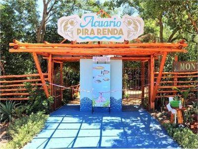 Pira Renda, primer acuario turístico abre sus puertas