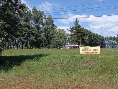 San Juan del Paraná: Denuncian que inmobiliarias venden terrenos sin servicios básicos