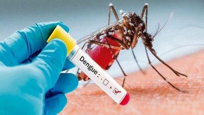 Cifra de afectados por dengue a nivel país sigue en aumento