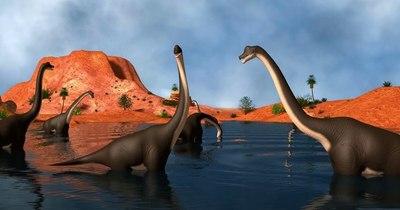 La Nación / Un cometa de los confines del sistema solar acabó con los dinosaurios