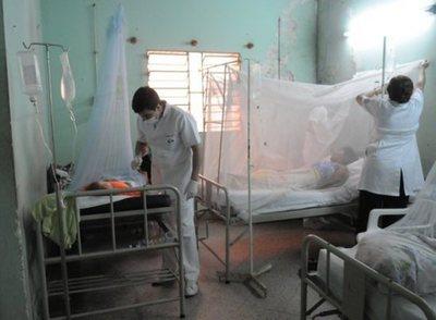 En lo que va del 2021 hay 113 casos confirmados de dengue