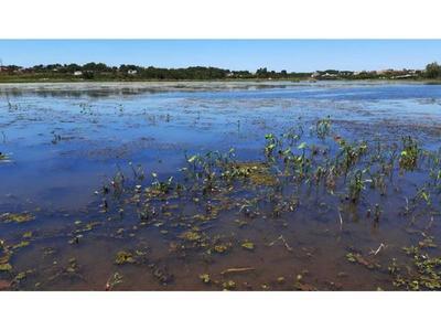 Yacyretá inicia trabajos de limpieza del arroyo Poti'y en Encarnación