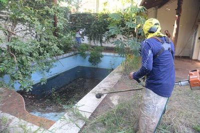 Recomiendan eliminar criaderos para frenar casos de Dengue