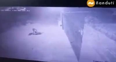 Hombre sufre descarga al intentar robar conductor de la ANDE de 23.000 voltios