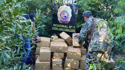 SENAD incautó más de 30 Toneladas de Marihuana en zona Capitán Bado