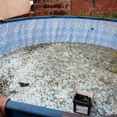 Cuidar piscinas ayuda a que no sean focos de Aedes aegypti