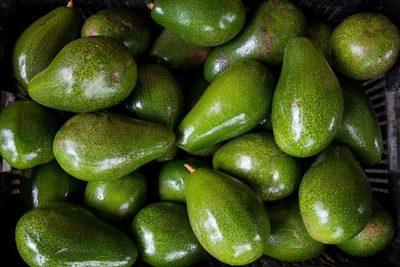 El aguacate dominicano contará con su marca de exportación en el mercado de EE.UU.