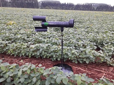 Instalarán un sistema automatizado para detectar la roya en cultivos
