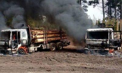 ARGENTINA: El Terrorismo Mapuche a las puertas de Buenos Aires