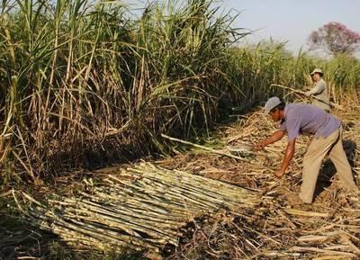 Chile y Japón apoyarán procesos de inclusión financiera de pequeños agricultores de Paraguay