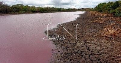 La Nación / Laguna Cerro: ordenan prisión en Emboscada para el dueño de empresa contaminante