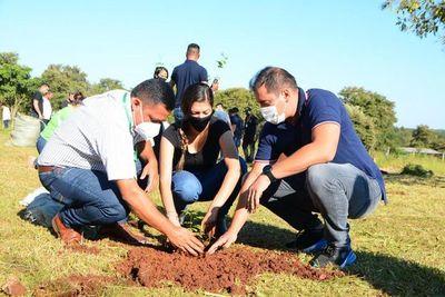 Plantan 300 arbolitos de especies nativas en Ciudad del Este