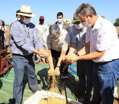 Inician cosecha de soja en Puerto Barra con presencia de Mario Abdo