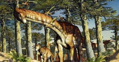 La Nación / Titanosaurio hallado en Argentina es el más antiguo