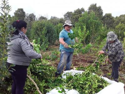 Apoyo a emprendedores de Itapúa
