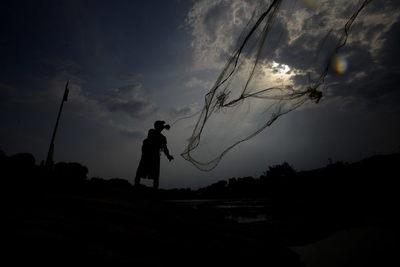 Pesca y consumo de cemento suben 74 y 21 % en enero en Perú