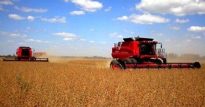 La Nación / Estiman un escenario favorable para envíos de cereales locales
