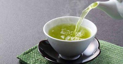Los suplementos de té verde modulan el desarrollo facial en síndrome de Down