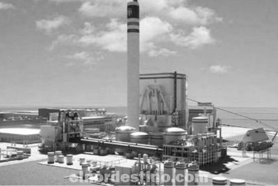 Consejo Nacional de Zonas Francas aprueba instalación de planta de celulosa en el departamento de Concepción