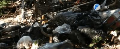Ineram: Piden limpieza del predio por temor a dengue