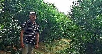 La Nación / Destacan exitosa experiencia de yerbatero que produce 30.000 kilos por año