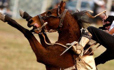 Yhú: Adolescente fallece al caer de un caballo