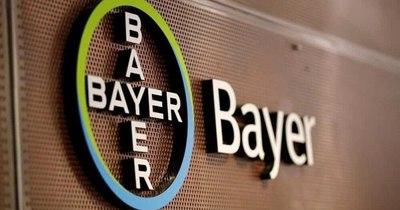 La Nación / Bayer presenta la edición 2021 del Programa Semillero de Futuro