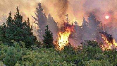 Preocupación por nuevos incendios forestales en Río Negro y Chubut: las llamas llegaron a la zona urbana