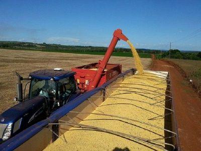 En extrañas circunstancias, roban camión con más de 33.000 kilos de soja