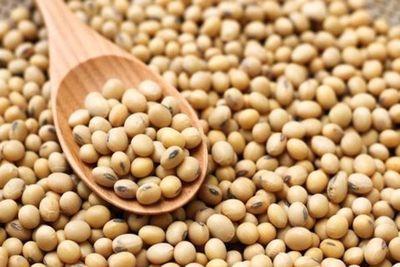 Mercado brasileño acapara con el 83% de las exportaciones de soja