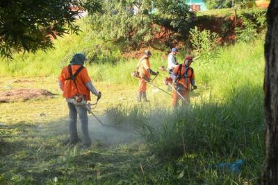 Continúan con jornada de minga ambiental y reforestación