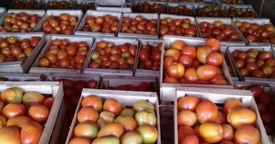 La Nación / Exitosa comercialización de tomate y locote de productores de Caaguazú