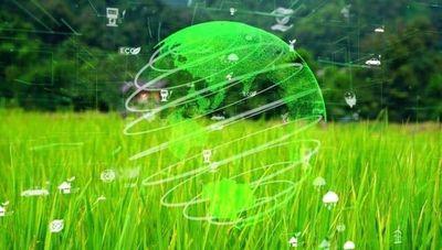 Modelo ESG: El medioambiente, la sociedad y el buen gobierno, claves de la empresa actual