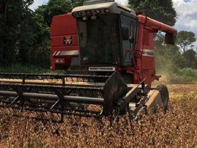 Taiwán y Paraguay con miras a reanudar comercio de soja