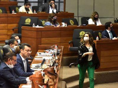 Kattya denuncia violencia política y Diputados repudia
