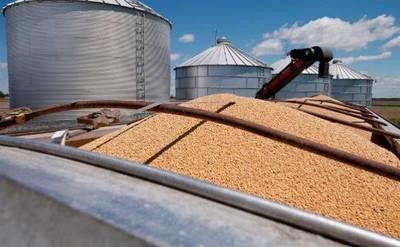 Molienda de soja y otros granos experimentó 80% de reducción
