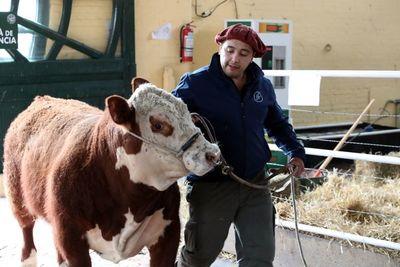 Uruguay, un pequeño entre gigantes cuya agricultura apunta al mundo