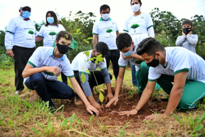 Campaña Heñói cerró la primera semana con más de 8.300 arbolitos plantados