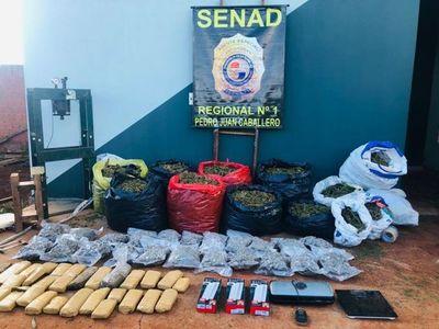 Intensos operativos de la Senad en Pedro Juan