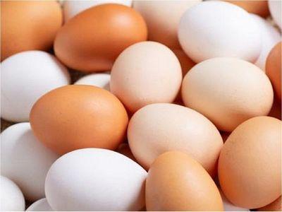 Productores denuncian masivo ingreso ilegal de huevos al país