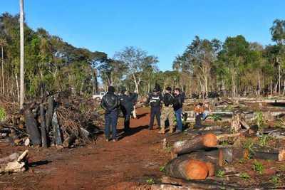 Disponen juicio oral para sindicados de deforestar propiedad de Itaipu en Puerto Indio