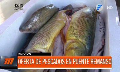 Oferta de pescados en Puente Remanso