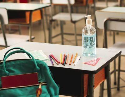Colegios privados buscarán suspender clases presenciales en invierno
